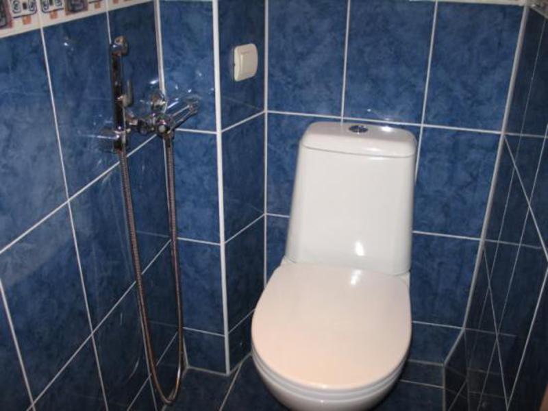 душ в туалете вместо биде как называется