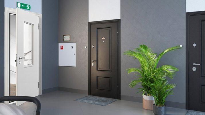 Как правильно выбрать хорошую дверь в тамбур